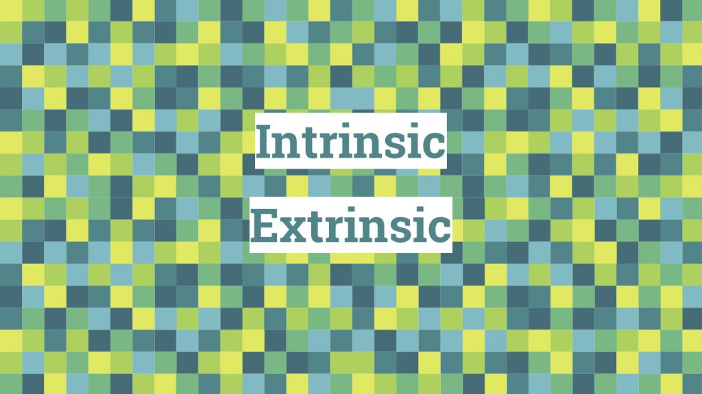 Intrinsic / Extrinsic